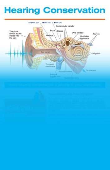 Hearing Conservation Image - V2