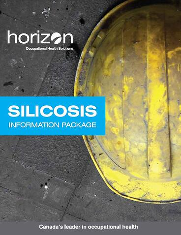 Silicosis Booklet Cover.jpg